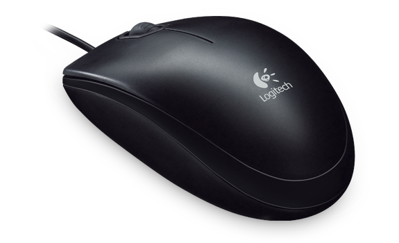 B100 Optical USB Mouse